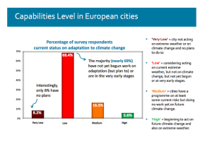 Capabilities level in European cities